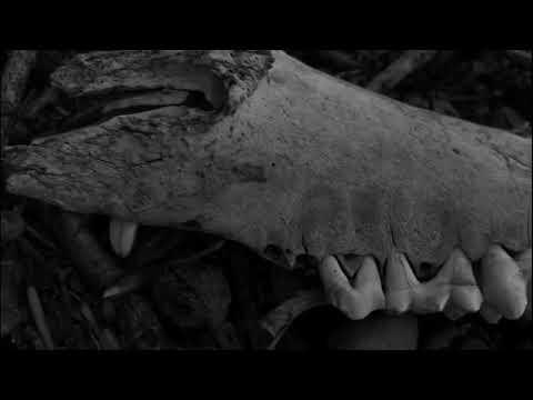 Toxic Trap - Memento (Melodic Thrash/Death Metal)