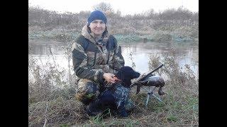 Охота на утку с русским охотничьим спаниелем(Стелла-Арктика)!!!