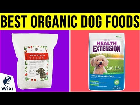 10 Best Organic Dog Foods 2019