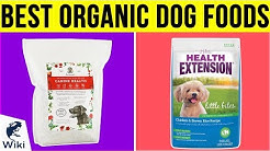 10 Best Organic Dog Foods 2019