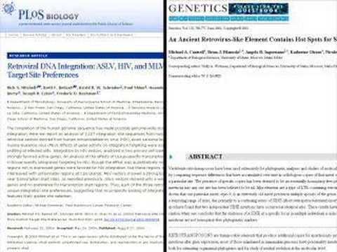 Preferential Integration of Endogenous Retroviruses