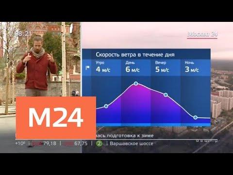 """""""Утро"""": синоптики пообещали москвичам теплую погоду в выходные дни - Москва 24"""