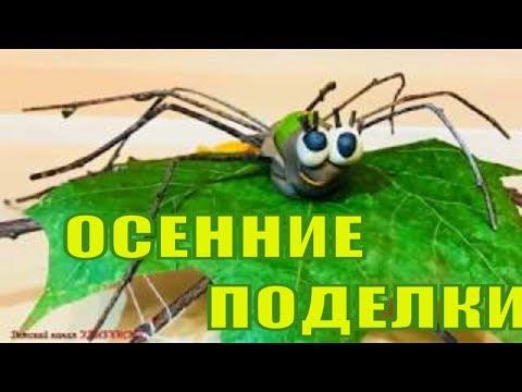Как сделать паука из природного материала