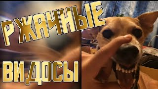 Maxim Show #3   ЛУЧШИЕ ПРИКОЛЫ НОЯБРЯ...