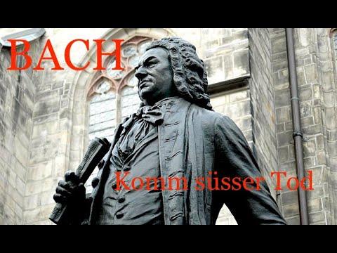 JOHANN SEBASTIAN BACH: Komm, süßer Tod (BWV 478) - David Szigetvari (tenor) - Xaver Varnus (organ)