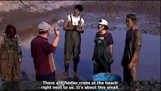 Video Eng Sub GOT7 Jackson the beach monster    Super funny cut download MP3, 3GP, MP4, WEBM, AVI, FLV Mei 2018