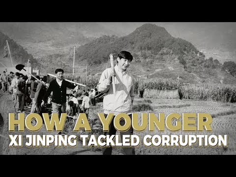 How a younger Xi Jinping tackled corruption
