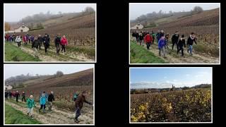 Le Beaujolais Nouveau 2018 à Rando-Evasion