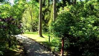 Ogród Dendrologiczny  Glinna 3czerwca 2010 część 2