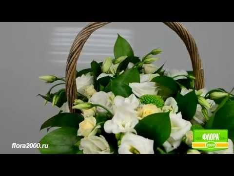 Доставка цветов в Астане. Доставка и заказ цветов в Астане.из YouTube · С высокой четкостью · Длительность: 2 мин25 с  · Просмотры: более 1.000 · отправлено: 05.12.2014 · кем отправлено: Natali Flowers