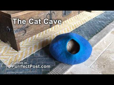Cat Cave - Lily Loves It!!