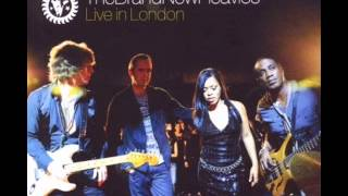 The Brand New Heavies - Brother Sister (live)