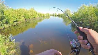 Ультралайт рыбалка на ЛЕТНИЕ ПРИМАНКИ и Новый спиннинг ARION до 5 г