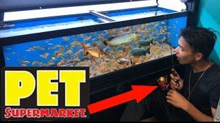 fishing-inside-pet-supermarket