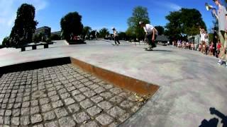 Go Skateboarding Day Copenhagen 2012