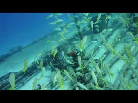 Underwater - Plongée sous-marine aux Bahamas avec Manon