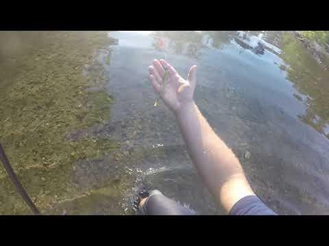 Missouri Creek Fishing