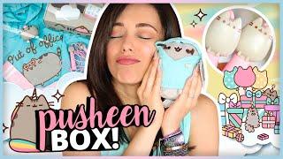 PUSHEEN BOX: LA CAJA VIENE MUCHO MAS CHIQUITA!