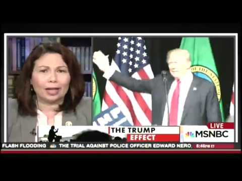 Tammy Duckworth on All In with Chris Hayes, 5/12/16