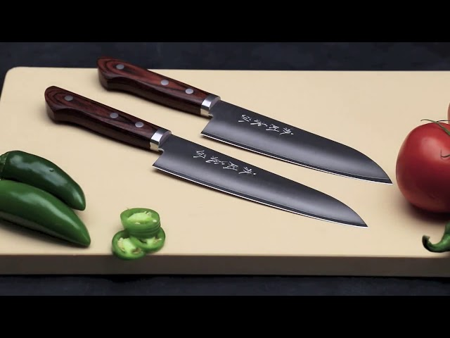 10 Japanese Best Chef Knife Under 100 $( You Won't Believe)