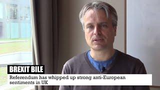 The 'European Idea' never landed in Britain: Joris Luyendijk on #Brexit (Nederlands Ondertitels)