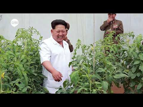 كيف تحاول كوريا الشمالية الإلتفاف على العقوبات؟  - نشر قبل 3 ساعة