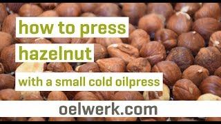 hazelnut oil pressing with sma…