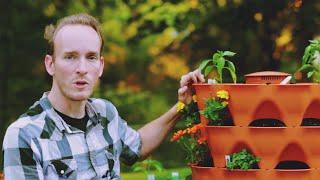 Benedict Jones speaks about growing in a Garden Tower