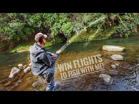 Fly Fishing Epic Clear Water River! [Win Flights To Fish With Me]