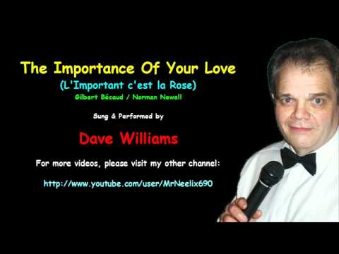 The Importance Of Your Love - Dave Williams