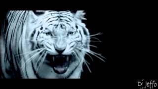 Sola J Balvin remix video Dj Jeffo