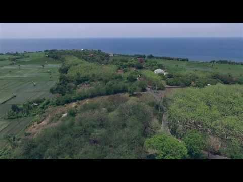 Land for Sale, Umeanyar, North Bali