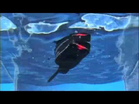 Icom M25 Float N Flash Marine VHF Radio