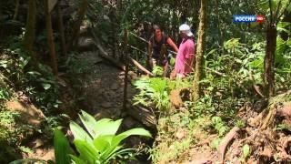 Гватемала горы,лес и море с Андреем Понкратовым.