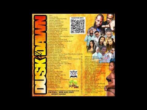 Dusk 'til Dawn Concert 2016 Promo Mix Busta Rhymes & Mavado