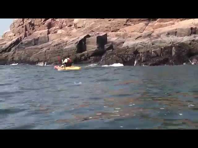 Ocean Kayak Tetra 10 & Tetra 12 Sit On Top Kayaks