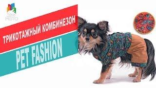 Трикотажный комбинезон для собак Pet Fashion | Обзор трикотажного комбинезона для собак Pet Fashion