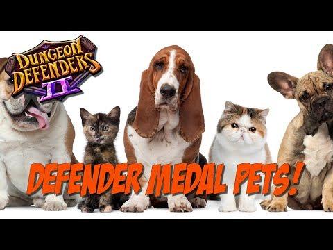 DD2 Defender Medal Pets Explained!