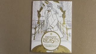 Fantastic Beasts and Where to Find Them: Magical Characters and Places Coloring Book flip through