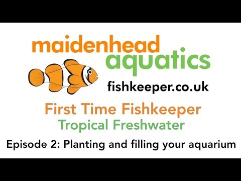 First Time Fishkeeper Episode 2: Planting And Filling Your Aquarium