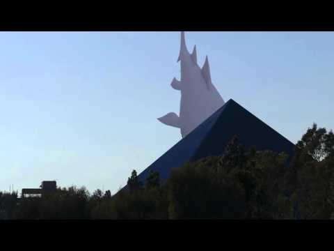shark attacking CSULB pyramid