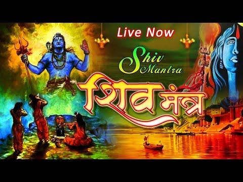 LIVE || सोमवार स्पेशल : Om Namah Shivaya Dhun | ॐ नमः शिवाय धुन | Peaceful SHIV DHUN | Bhajan