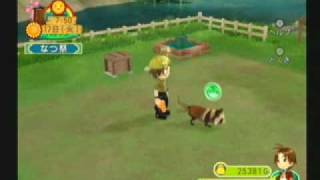 Harvest Moon: Animal Parade Pets - Tanuki/Raccon