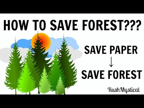 5 interesting ways to Save Forest!! Save Paper, Save Forest