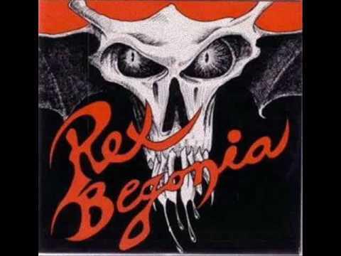 """Rex Begonia - """"Rex Begonia"""""""