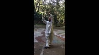 WuQinXi  Qi Gong-  el juego de los 5 animales, Chikung del ciervo