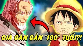 Top 10 Lão Già Gân Mạnh và Ấn Tượng Nhất Trong One Piece
