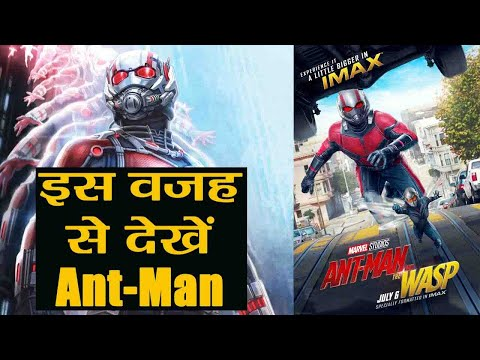 Ant-Man and the Wasp: MCU's Best film after Avengers Infinity War; Here's Why | FilmiBeat