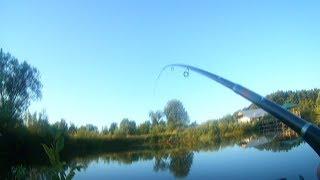 Поклевка -- подсечка -- звук фрикциона раздает порцию адреналина, но оказалось....приколы на рыбалке