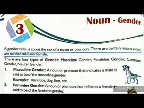 Noun gender explanation in Tamil - YouTube